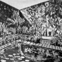 Desenho Burle Marx